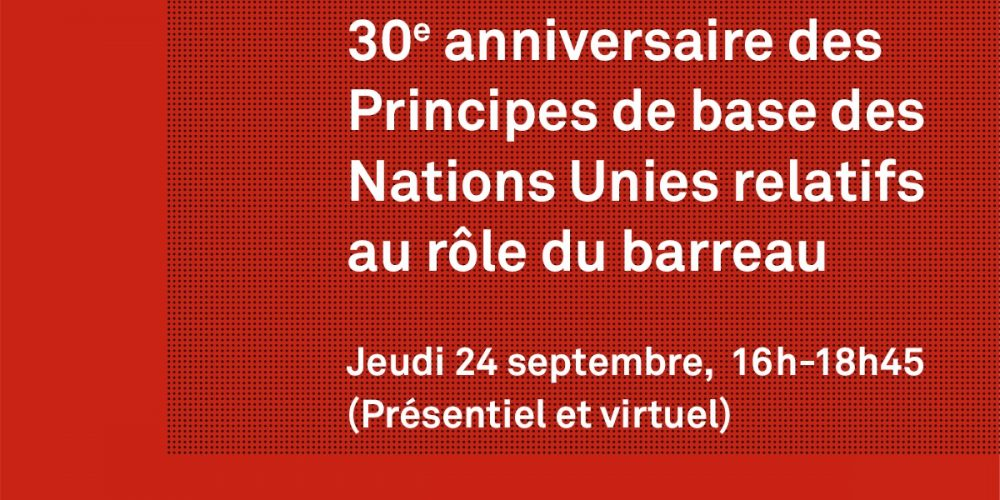 Invitation: 30 ans des Principes de base des Nations Unies
