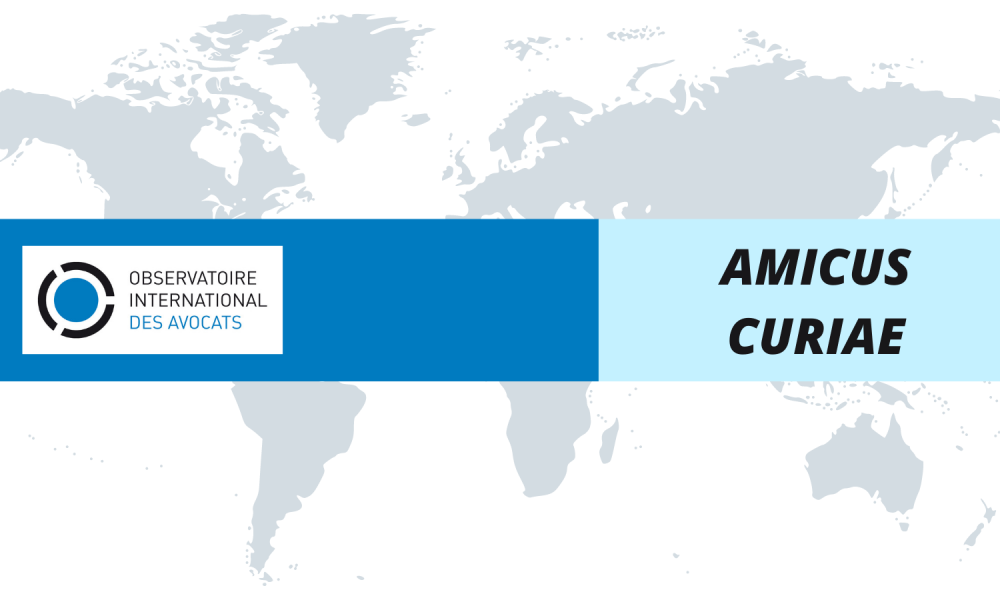 """COLOMBIA : L'OIAD dépose un mémoire d'Amicus Curiae dans """"l'affaire Dilan Cruz"""""""
