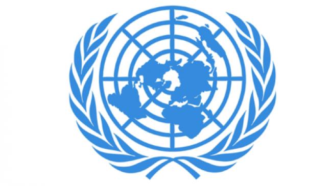 Report alternatif sur la Turquie dans le cadre de l'Examen Périodique Universel